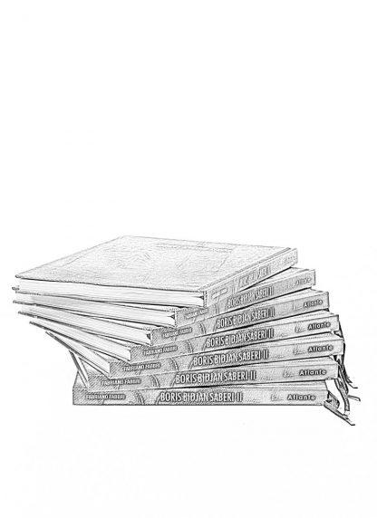 BORIS BIDJAN SABERI book buch hide m 1
